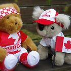 Proud Canadians by Jeannie  Mazur