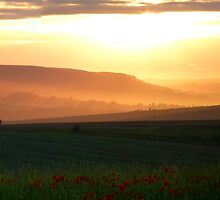 Warm Evening Haze by mikebov