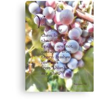 You will know them-Matthew 7:16 Canvas Print