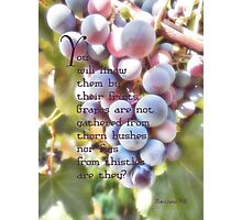You will know them-Matthew 7:16 Photographic Print