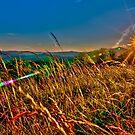 blue ridge sunrise by Alexandr Grichenko
