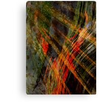 Natural Forces Canvas Print