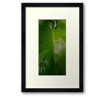 ©GS A Green New Thing III Framed Print