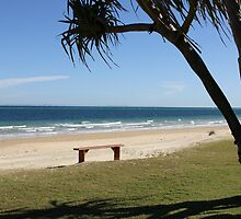 Bench on the Beach, Tangalooma. by aussiebushstick