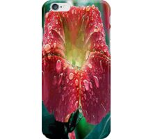 Abstract Red Morning Glory With Water Drops iPhone Case/Skin