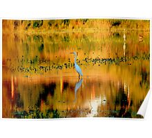 Abstract Egret Poster