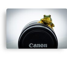 Canon Frog Canvas Print