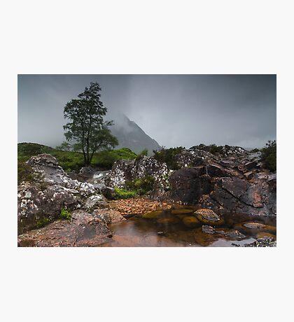 Standing In The Rain Photographic Print
