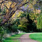Autumn Walk - New Norfolk, Tasmania by clickedbynic