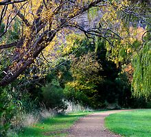 Autumn Walk - New Norfolk, Tasmania by clickedbynic