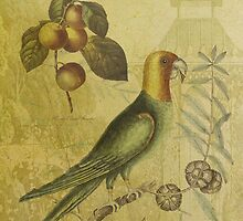 Parrot with Plums by Sarah Vernon