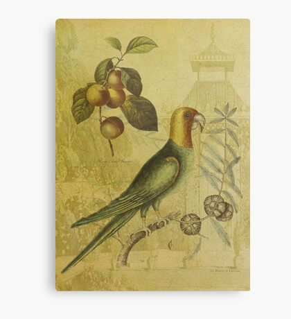 Parrot with Plums Canvas Print