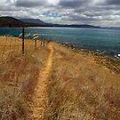 Dennes Walk - Bruny Island, Tasmania by clickedbynic