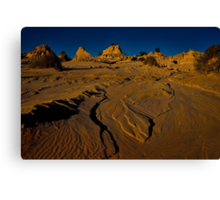 Is it a lake or is it a desert? Canvas Print