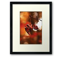 Red is here Framed Print