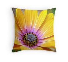 MOTHER NATURES COLOR PALETTE Throw Pillow