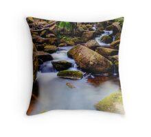 Padley Gorge Burbage Brook Throw Pillow