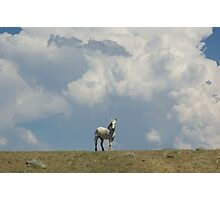 """Commanding The Clouds""  Photographic Print"