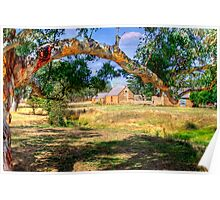 Farm Life - Mount Barker, South Australia Poster