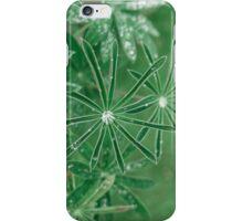 Dew Or Rain On Leaves iPhone Case/Skin