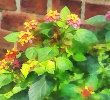 Lantana Against Brick Wall by Susan Savad