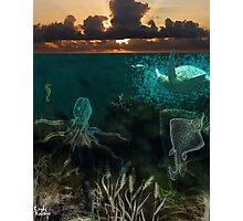 Under the sea... Photographic Print
