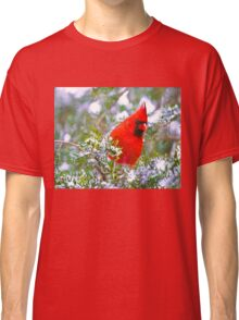 Cardinal in Snowy Evergreen Tree Classic T-Shirt
