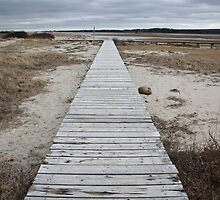 Sandwich Boardwalk by Tooka