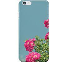 Pink Flowers Teal Skies iPhone Case/Skin