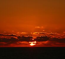 Jamaican Sunset by Andy Busbridge-King