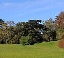 Blenheim Palace 02 by Magic-Moments