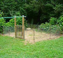 The Goin' Greener Veggie Garden by Vivian Eagleson