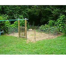 The Goin' Greener Veggie Garden Photographic Print