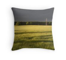 Fields of Barley 2 Throw Pillow