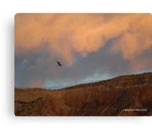 Turkey Vulture Circles Ghost Ranch at Sundown Canvas Print