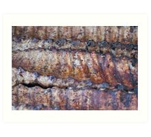 Grilled Baby Back Ribs Art Print