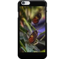 2 Butterflies iPhone Case/Skin