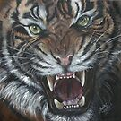 Tigro the Tiger by Sherry Arthur
