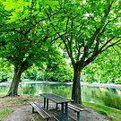 Herbert Park, Dublin, Ireland by Alessio Michelini