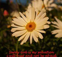 Isaiah 12:2 (day 4) by tonysphotospot