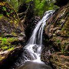 Campbell Falls (upper falls - vertical) by Timothy Borkowski