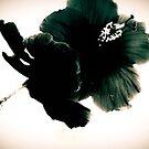Black  by ZoeMcduncan