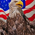 Eagle with Waving Flag by matthewbam
