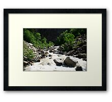 Natural Painting in Natures Home Framed Print