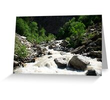 Natural Painting in Natures Home Greeting Card