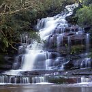 Somersby Falls  by Doug Cliff