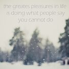 the greatest pleasures in life is doing what people say you cannot do by netza