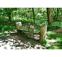 Ben's Personal Bench. Photographic Print