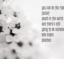 You can be the ripest, juiciest peach in the world, and there's still going to be somebody who hates peaches. by netza