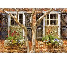 Flower-Filled Window Boxes on Tradd St - Charleston SC Photographic Print